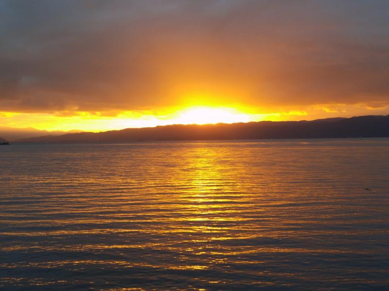 Sonnenaufgang im Hafen von Wellington