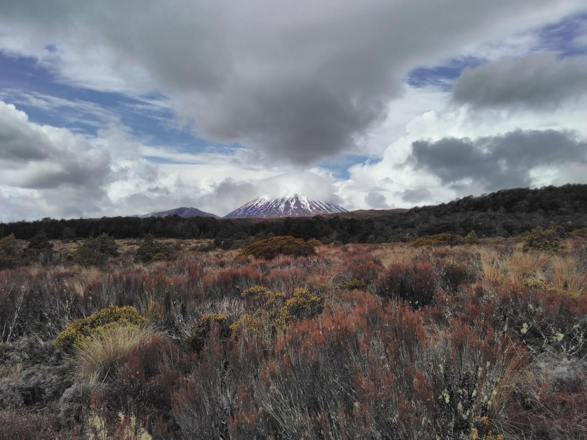 Blick auf Mount Ngauruhoe (der einzige, den wir je hatten!)