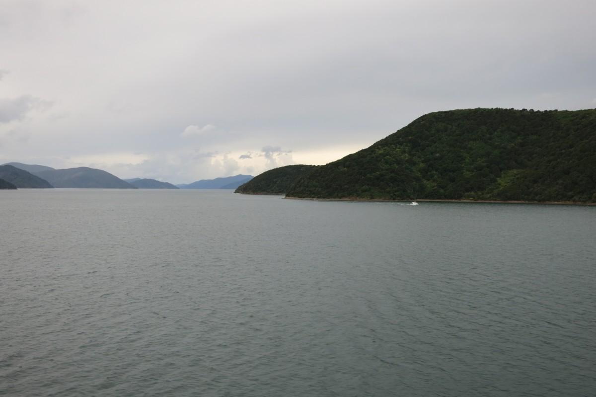 Malborough Sound (Ende der Cookmeerenge auf der Südinsel)