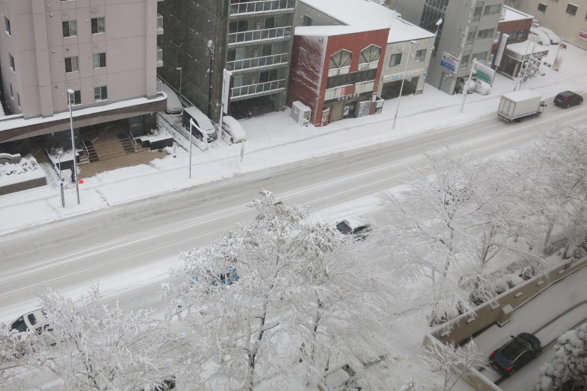 Schnee in Sapporo (vom Hotelfenster aus)