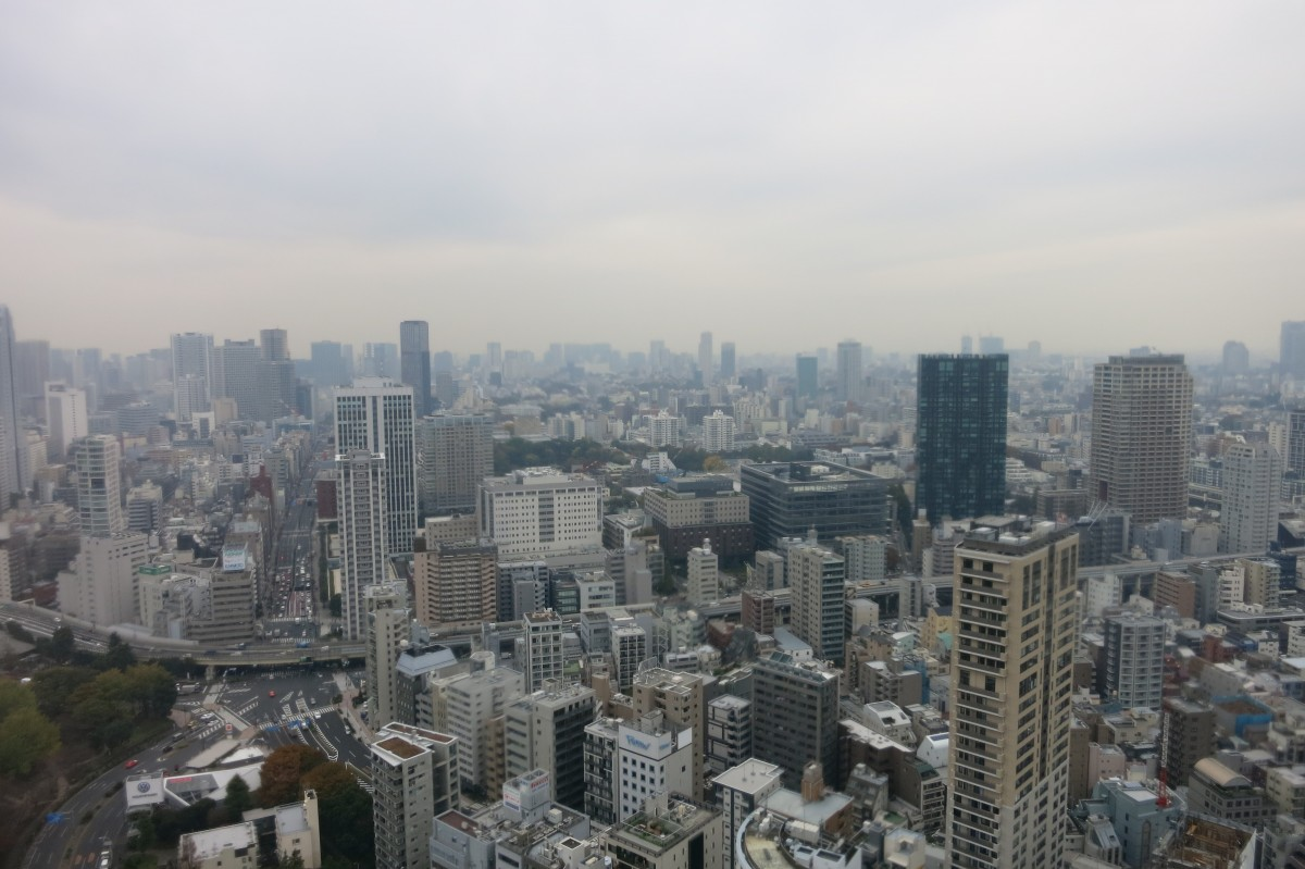 Stadt so weit das Auge reicht (Ausblick vom Tokio Tower)