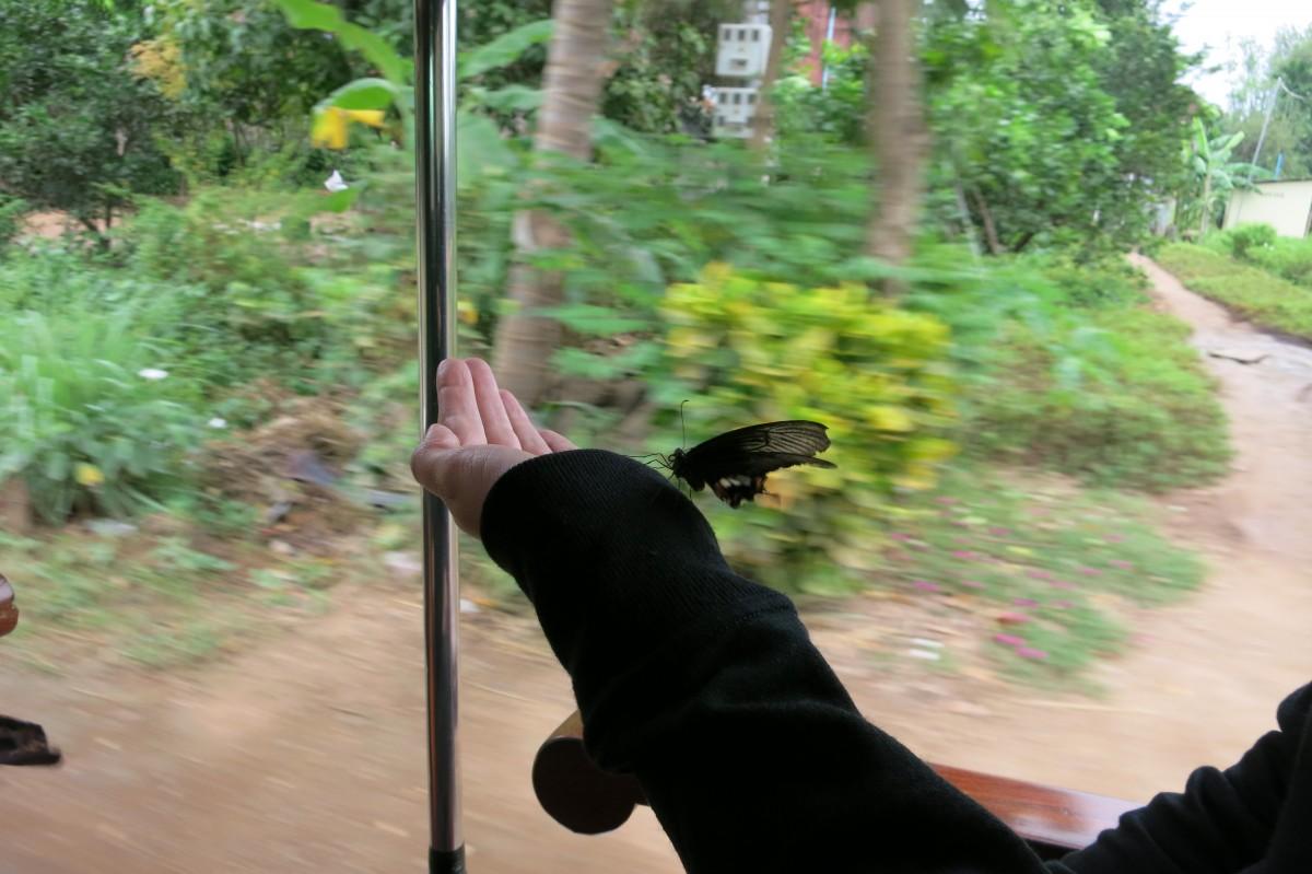 Kurzzeitige Mitfahrer (auf dem Weg nach Phnom Han Chey)