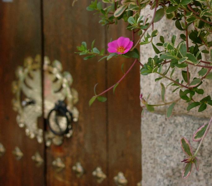 Traditionelle Tür in Bukchon