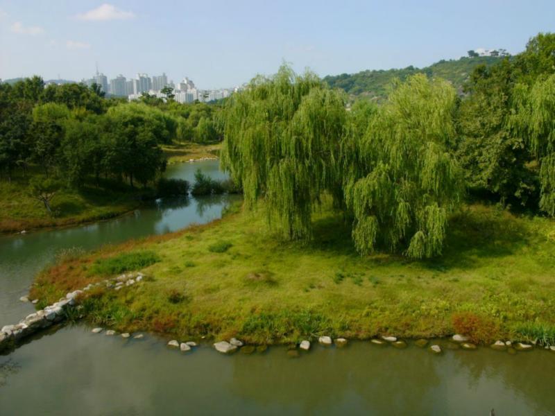 Seoul Forst Ecopark