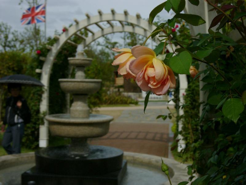Impression aus dem englischen Garten