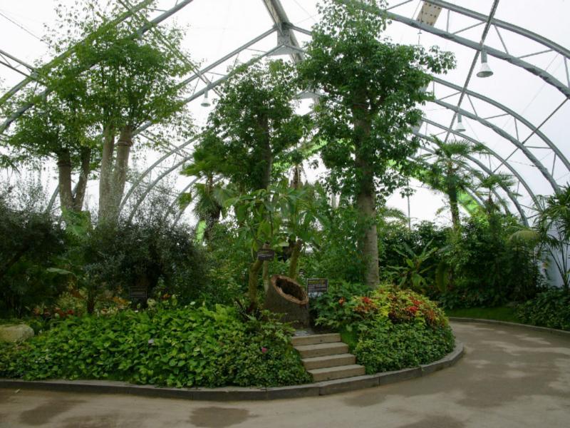 Große Hallen zeigen Gartenbau-Arrangements