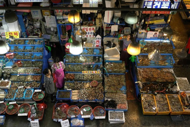 Viel Fisch und anderes Meeresgetier - frisch (d.h. lebendig)