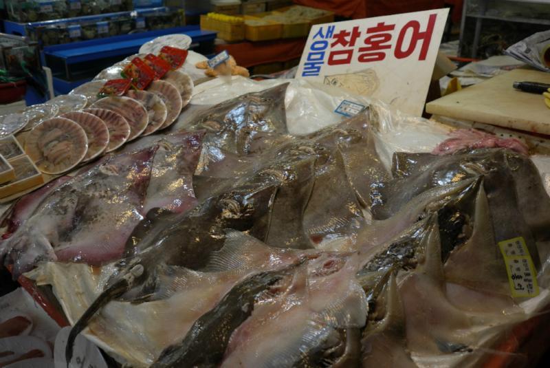exotisch für uns - normal für die Koreaner