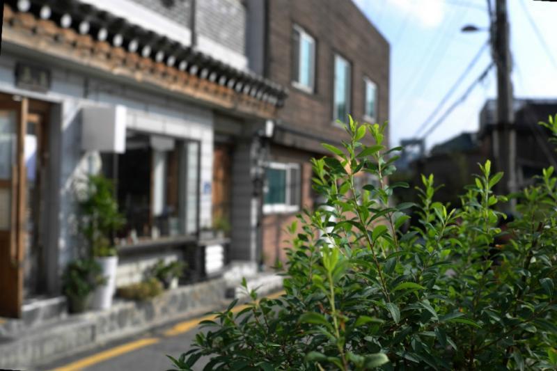 Das alte Nord-Viertel: Bukchon