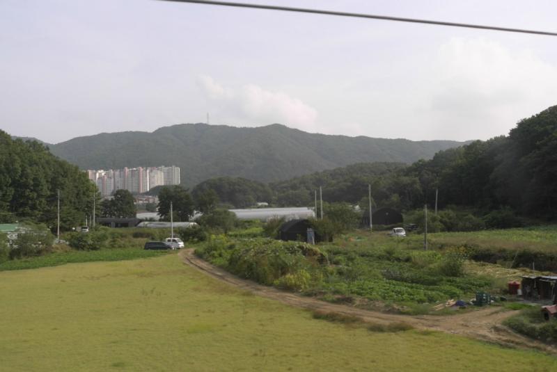 Zwischen den Trabenten - Landwirtschaft+Berge