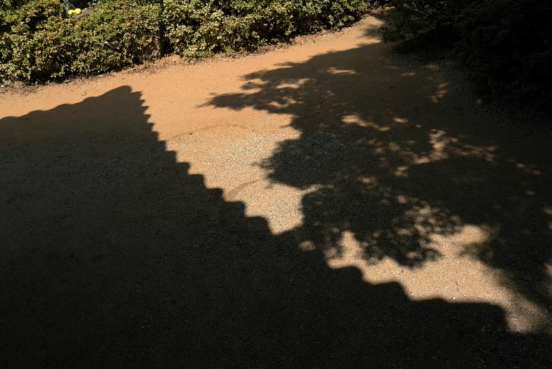 Auch ein Schatten hat hier seinen Reiz