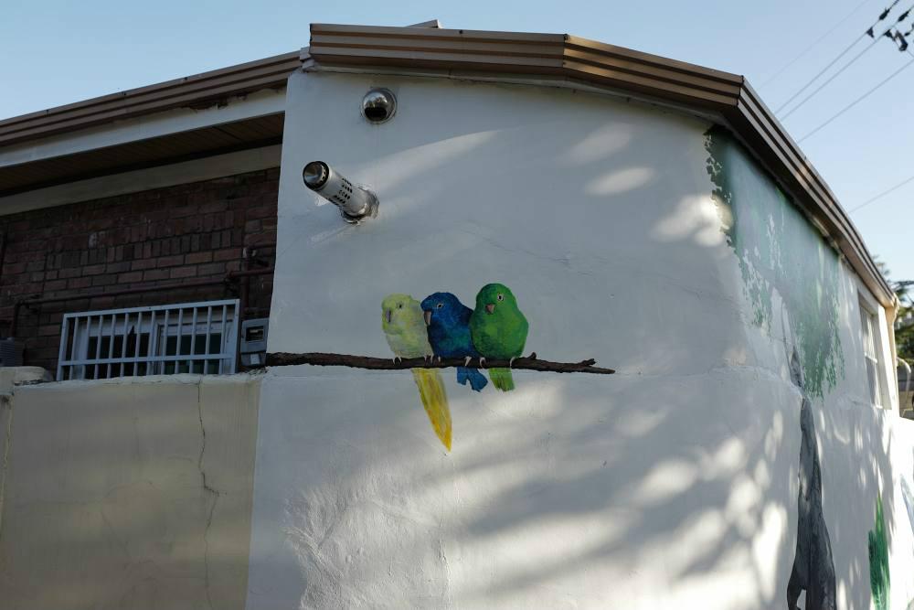 Die haben doch einen Vogel :-)