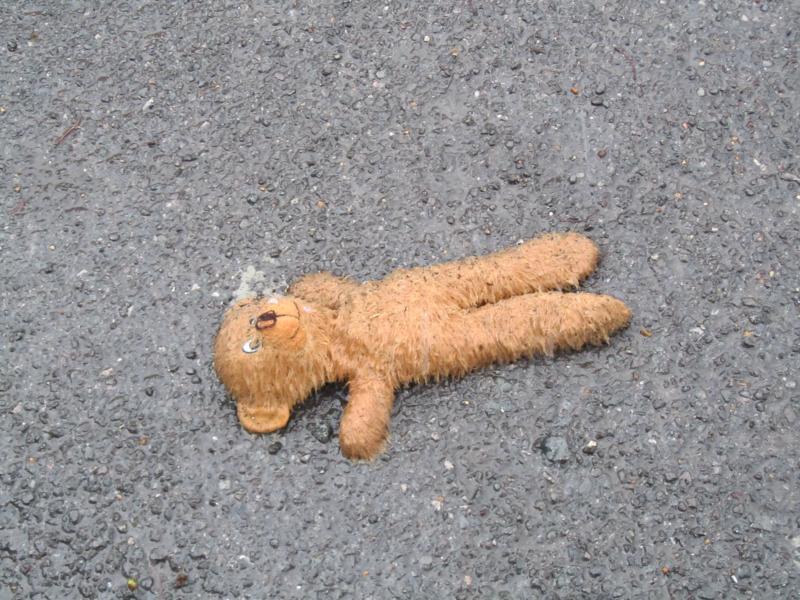 Poor Teddy!