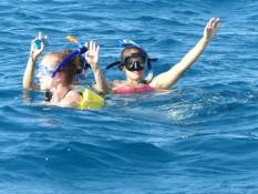 Mit Delfinen schwimmen <3