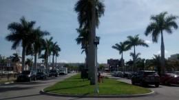 zwischen Hafen und Downtown