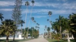 Everglades City